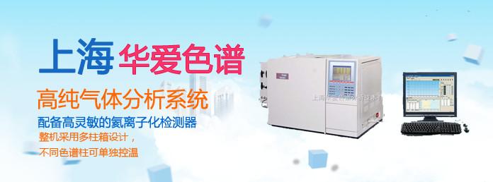 GC-9560-HG高纯气体分析系统