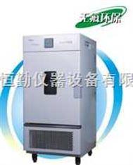 恒温恒湿箱LHS-100CA