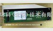K1000总烃分析仪