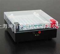 JY-DD2型等电聚焦電泳槽