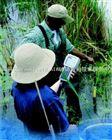 YSI 6系列多功能水质监测系统
