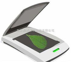 叶面积测定仪 叶面积测量仪 微电子面积测量仪 叶面积仪