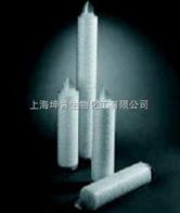 PALL空气系统除菌滤芯