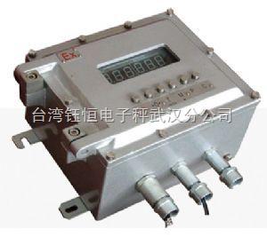 供应E0811隔爆型仪表,安全、可靠、准确的防爆衡器