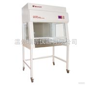 BJ-1CD 单人单面垂直净化工作台