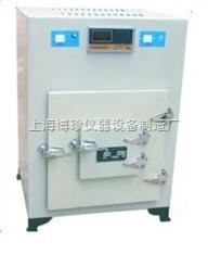 XCT-2C 500℃高温循环鼓风干燥箱  涂料/油漆干燥箱/烘干箱