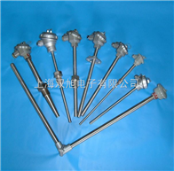 WRNK2-131WRER2-14化工专用热电偶电阻