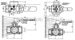 Q14Q14(5)-内螺纹三通球阀