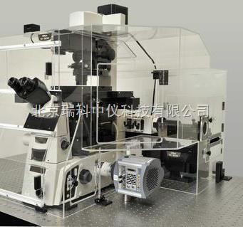 49)n-sim几乎实现了传统光学显微镜两倍的分辨率