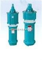 WZ型无油干式真空泵