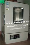 立式烘箱/电热鼓风干燥箱
