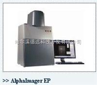 AlphaImager EP通用型凝膠成像系統