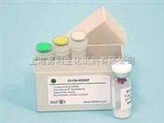 大鼠多巴胺D2受体ELISA试剂盒