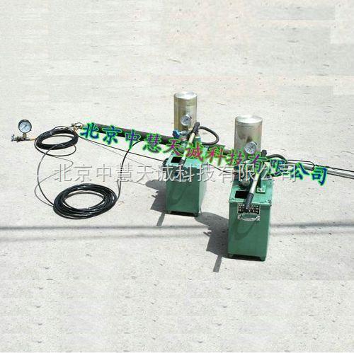 胶囊瓦斯压力快速测定仪/瓦斯压力测定仪 型号:GYJM-III