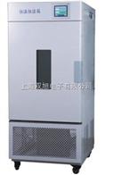 BPS-250CA恒温恒湿箱-可程式触摸屏(无氟制冷)BPS-250CA BPS-250CB