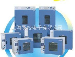 电热恒温鼓风干燥箱DHG-9075A