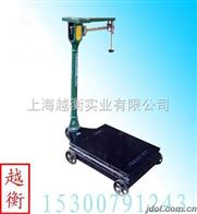 TGT機械地磅,老式機械秤,機械地泵
