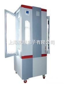 光照培养箱BSG-300