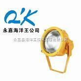 浙江皇隆照明科技有限公司