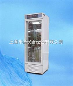 RXM-300C智能人工气候箱