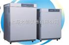 二氧化碳培养箱--BPN系列(原HHCP系列)