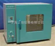 电热恒温干燥箱DHG-9071A