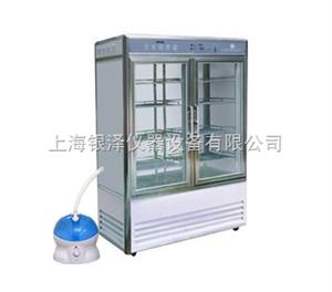 LRH-800-Y药物稳定性试验箱