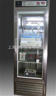 CXG-A层析柜 层析厨