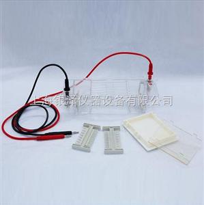 DYCP-31CN琼脂糖水平电泳仪