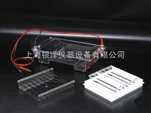 DYCP-31E琼脂糖水平电泳仪