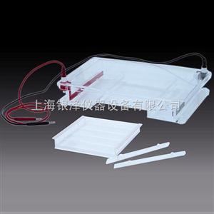 DYCP-31F琼脂糖水平电泳仪