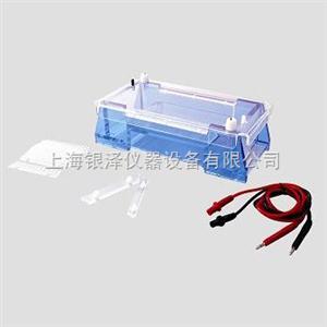 DYCP-32A琼脂糖水平电泳仪