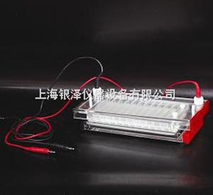 DYCP-44N快速凝胶电泳仪