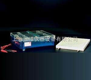 DYCP-37B等电聚焦多用途电泳仪