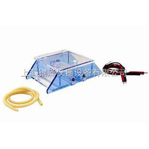 DYCP-43BDNA回收电泳仪