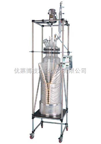 圆柱形单层反应釜