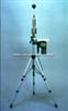 WBGT-101-WBGT(湿球黑球温度)指数仪WBGT-101