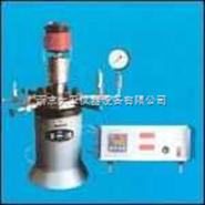 100-250ml微型搅拌式高压釜
