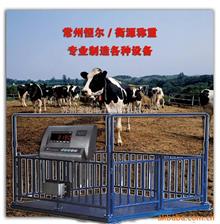 SCS1212秤羊電子秤,內蒙古肉羊電子秤,草原專用牲畜秤1000公斤
