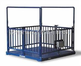 SCS500公斤電子秤,動態稱重電子秤,秤豬馬牛羊電子秤,牲畜秤