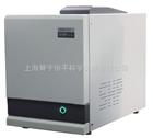 GC1100P气相色谱仪