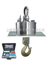 上海电子吊称厂家