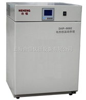 DHP-9272上海精密型电热恒温培养箱 细菌培养箱