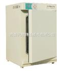 低價供應中儀國科DHP-9082電熱恒溫培養箱