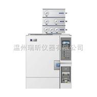 煤气或二甲醚气相色谱仪GC1650 打火机液化气检测仪器