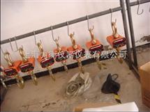 OCS电子吊秤+电子吊称 电子吊钩秤*
