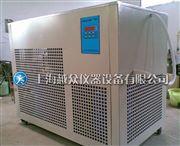 DLSB-100/-20℃(100L)低温冷却液水循环泵