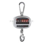 500kg天津小型直视电子吊秤
