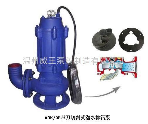 不锈钢电动排污泵*