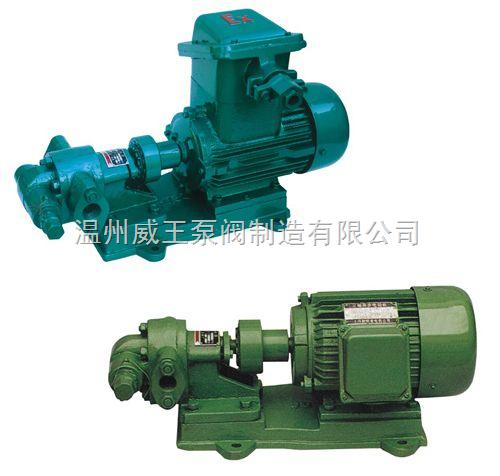 KCB油泵:KCB不锈钢齿轮泵油泵永嘉威王制造